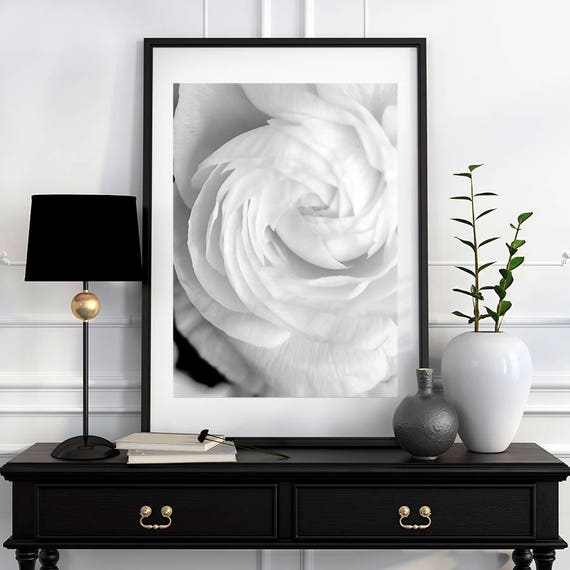 Black and White Photography, Floral Photography, Macro Flower, Elegant Classic Home Decor, Fine Art Print, Cindy Taylor