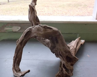 Lakeshore Driftwood Piece OOAK Unique 3 Curvy Twisted Piece Large Great piece for Taxidermy or Air Plants Rustic 218-13