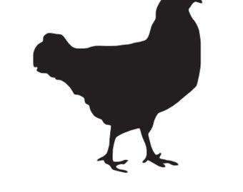 Pack of 3 Chicken Style 2 Stencils Made from 4 Ply Mat Board, 11x14, 8x10 and 5x7 -Package includes One of Each Size