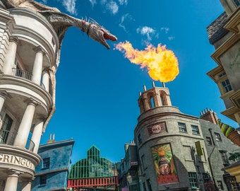 "Harry Potter Scary Burning Torch - ""Dragon Flame"" - Fine Art Color Photograph   (9.5"" x 13.25"" Print on 14"" x 18"" Archival Board)"