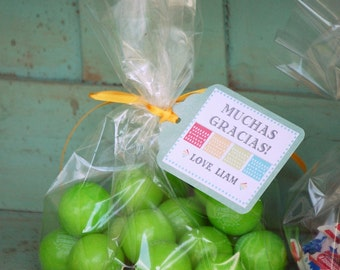 The FIESTA Collection - Fantastic Favor Tags with Bags from Mary Had a Little Party