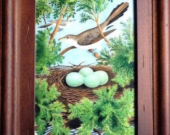 Framed Cuckow Bird Print