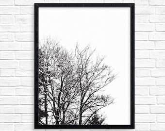 Black and White Tree, Art Print, Wall Art, Home Decor, Black and White Poster, Nursery Print