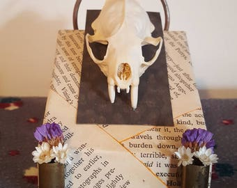 Real Mink skull bullet casing dried flowers halo taxidermy book pages