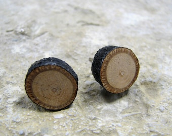 Rustic Linden - Tilia cordata- Twig Wooden Stud Earrings by Tanja Sova