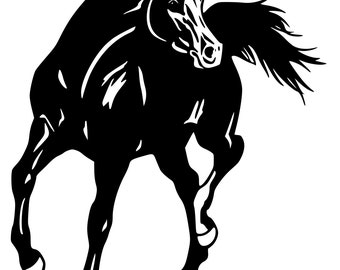 Horse- Arabian Horse wall decal, Horse sticker 28 inches x 29 inches, 790-HS.