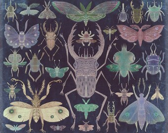 Entomologist's Wish (The Neon Version) - Art print