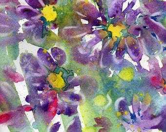 Fresh Pick No.152, limited edition of 50 fine art giclee prints