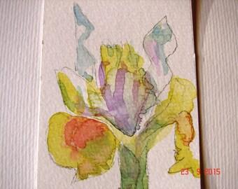 Iris ACEO Flower Painting, 'Yellow Dutch Iris' - aceo miniature painting, floral ACEO, flower ACEO, iris watercolour, iris art, Australian