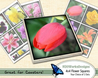 Flowers 4x4 Squares (Your CHOICE of Sheets ) COASTER Art, Multicolor, Tulip, Daisies, Tiger Lily, Daffodil, Hyacinths, Pansy, PRINTABLE