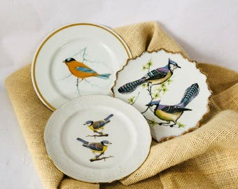 Bird plates vintage mismatch wall hanging art picture home decor set of three