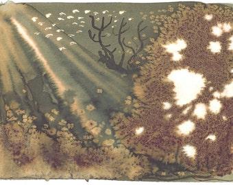 Seagarden (Print)