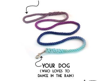 """Range Rope Dog Leash """"The Storm"""" in  Grey, Purple, Navy and Robin's Egg"""