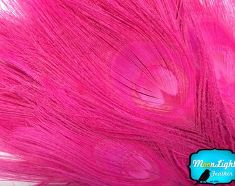 Peacock Feathers, 5 Pieces- HOT PINK Bleached and Dyed Tails with Full Eyes Peacock Feathers: 266