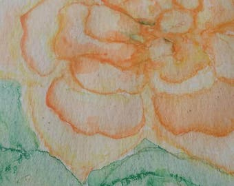 Apricot roses original watercolor painting by m.O'Neill