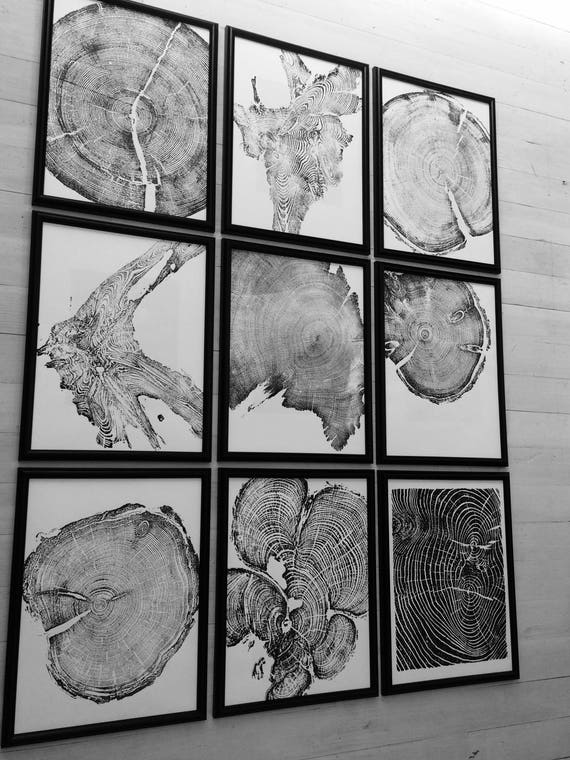 Set of 9 Framed Prints, Tree ring art prints, Nature inspired art, Woodcut prints, statement art, Tree rings, tree stump, huge wall art
