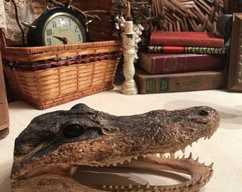 Genuine Vintage Alligator Taxidermy Head