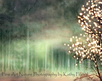 Fairylights Nature Photography, Sparkling Woodlands, Fantasy Fairy Lights Nature, Ethereal Green Nature, Fairytale Nature Trees Woodlands