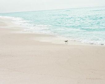 Dreamy Ocean Sandpiper Photo, Tranquil Sea Bird Nursery Beach Photography, Muted Minimal Minimalist, Taupe Ivory Cream Pale Aqua Blue Water