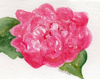 Pink Peony Original Watercolor Painting, 4 x 6 Flower Painting, Peony Wall Art  peony illustration floral