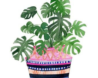 Wählen Sie drei Drucke Set: Verschiedene Pflanze in Museumsqualität von Lindsay Gardner