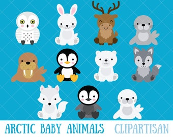 Arctic Baby Animals Clipart / Polar Bear / Penguin