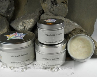 Soy Wax Container Candles ***Alpine Frost – Blueberry Cheesecake*** Choose Your Scent