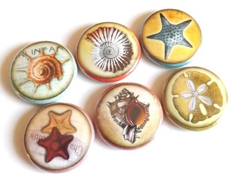 Fridge Magnets Ocean Sea refrigerator beach party favors stocking stuffers starfish shells sand dollar gifts flair pins nautical coastal