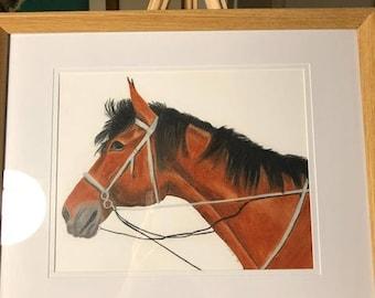 """Original Framed artwork """"Roux"""" in Polychromo Colour Pencils"""