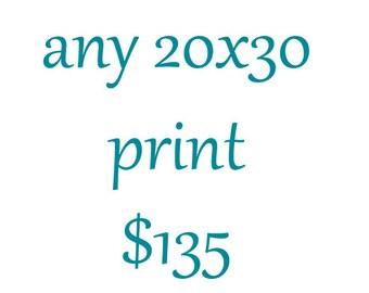 20x30 Photography Print-Large Wall Art-Custom Enlargement