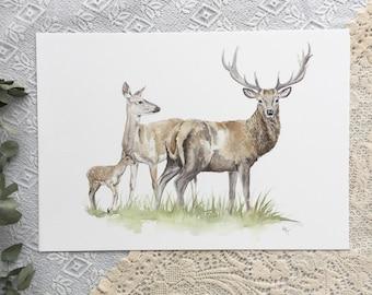 A3 Deer Family watercolour print
