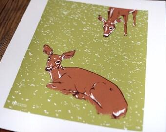 16x20 Deer in Flower Field Screenprint