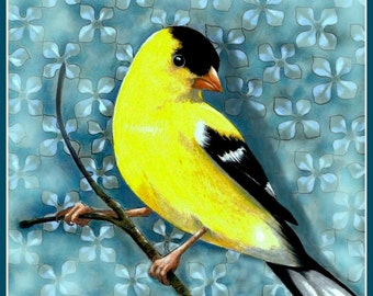 "6"" x 6""  Bird Art, American Goldfinch, Giclee Print by Melody Lea Lamb"