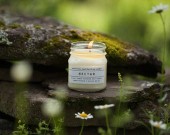Nectar Soy Candle - Agave Soy Candle - Cactus Candle - Soy Candles - Spring Candle - Personalized Candle - Natural Candle - Succulent Candle