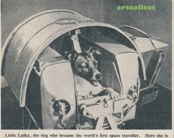 Vintage Children's Image (1950s): Laika, Russian Sputnik Space Dog. Spaceism.
