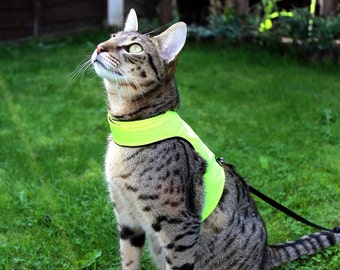 Mynwood Cat Walking Jacket Harness Vest High Visability yellow or orange
