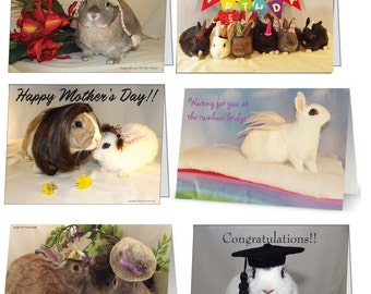 Pack of 6 Greeting Cards.