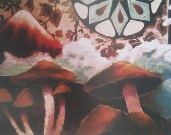 Mushrooms, Clouds digital print- 8.5x11in.
