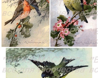 Rice paper decoupage #160001 birds Decopatch Decoupage supplies
