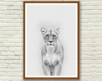 Animal Print, Nursery Wall Art, Safari Nursery Prints, Lioness Print, Nursery Prints, Home Decor, Baby Animal Prints,  Kitchen Wall Art