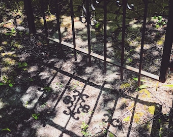 Flint Michigan photography, Carriage Town Historic District, gate, shadow, matted photo