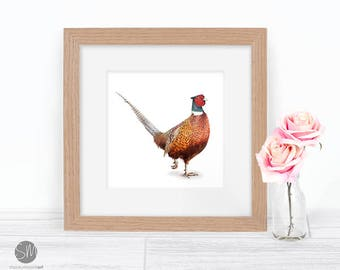 Pheasant Print Framed Artwork Picture