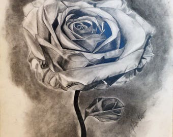 Rose Print/Poster, Graphite and Charcoal Drawing