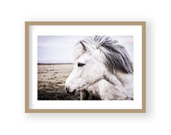 Horse Decor,  Wilderness Art, Horse Art, Equestrian Decor, Scandi Decor, Horse Photography, Girls Room Decor