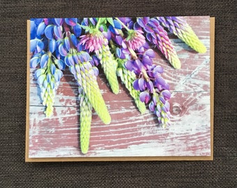 Lupins / Notecard / Blank Inside / FREE SHIPPING