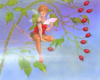 The Rosehip Fairy from 'The Flower Fairies go to Seed' - art print