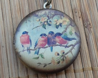 Birds - Robin Redbreast - round brass art locket - birds on a floral branch