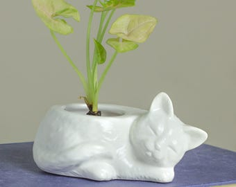 White Kitty planter, ceramic succulent planter, handmade pottery planter, Ceramic plant pot, cat lover gift Spring gardening READY TO SHIP