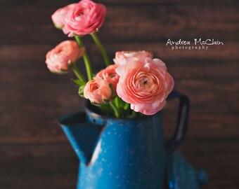 Peach & Blue ~ 8 x 10 Photo Print