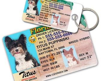Florida Driver License Custom Pet ID Tags and Wallet Card - Dog ID Tag - Personalized Pet ID Tags